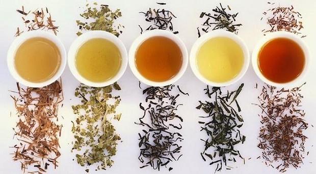 varietà-di-tè